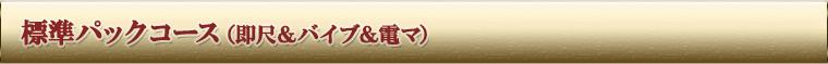 標準パックコース(即尺&バイブ&電マ)