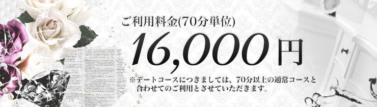 ご利用料金:16,000円(70分単位)