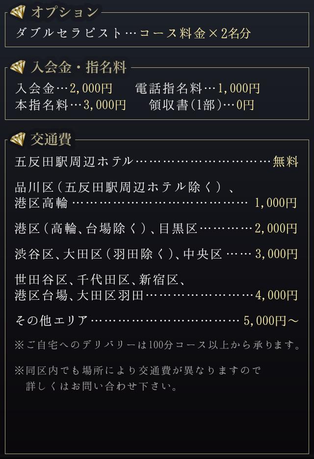 オプション料金・入会金・指名料・交通費