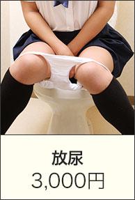 放尿|3,000円