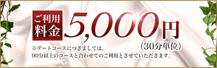 ご利用料金:5,000円(30分単位)