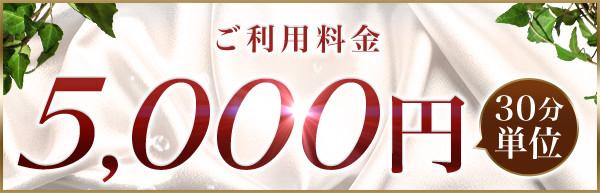 ご利用料金(30分単位)5,000円