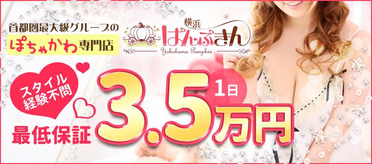 首都圏最大級グループのぽちゃかわ専門店 スタイル経験不問 日給最低保証3.5万円